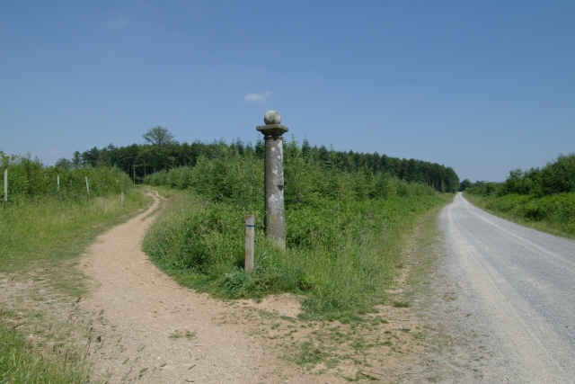 Track and disused tramway, Cann Wood - geograph.org.uk - 188128