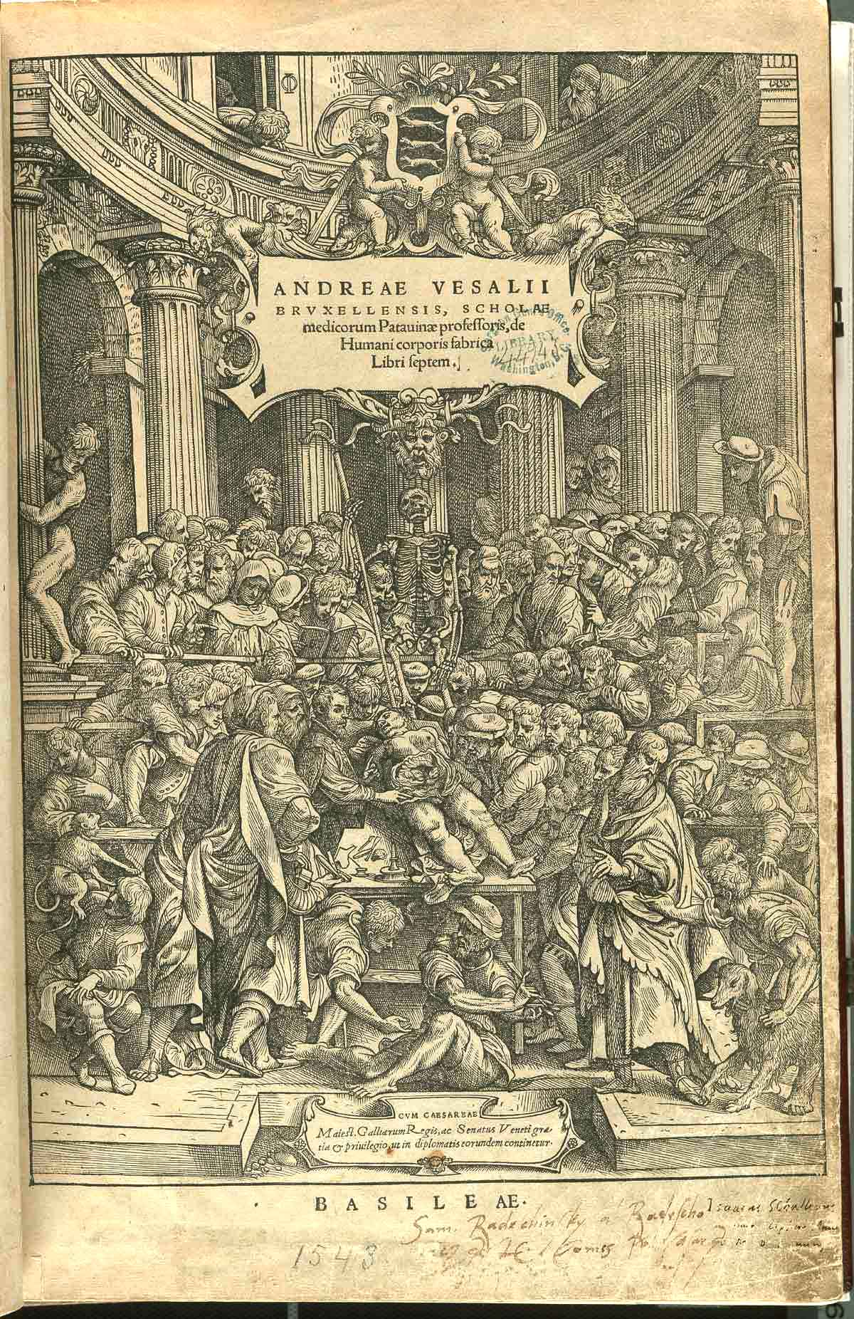 Medical Renaissance - Wikipedia