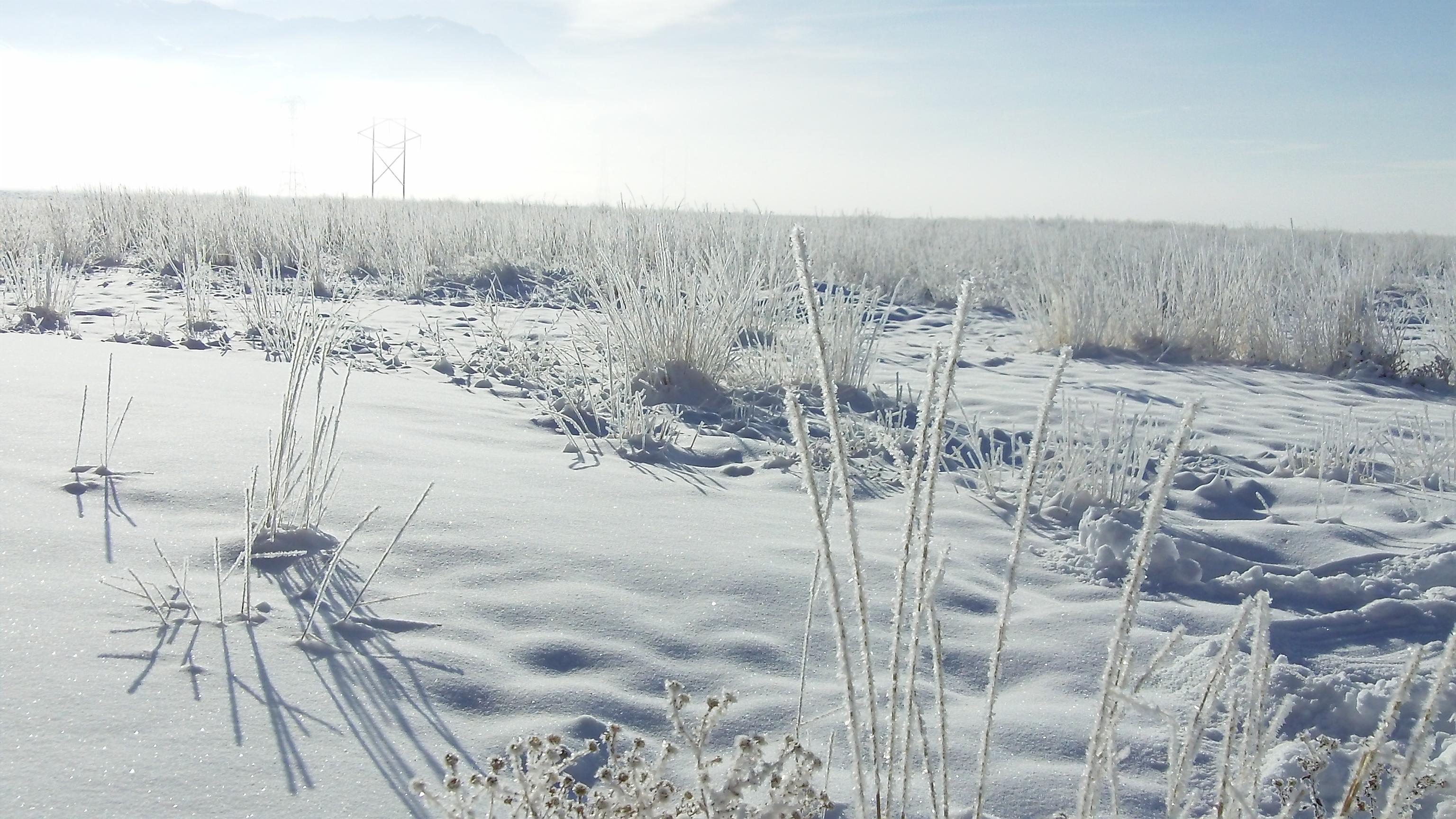 File:Winter Wonderland (5220843441).jpg - Wikimedia Commons
