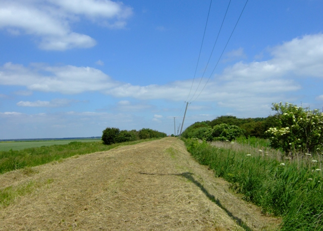 Woodwalton Fen - geograph.org.uk - 844765