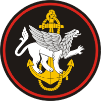 810th marine brigade patch.png