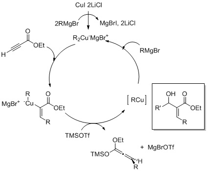 Carbocupration mechanism