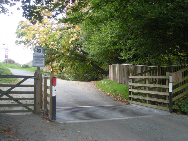 File:Cattle grid on Burway Hill - geograph.org.uk - 1013750.jpg