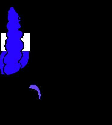 ascending colon - wikipedia, Human body