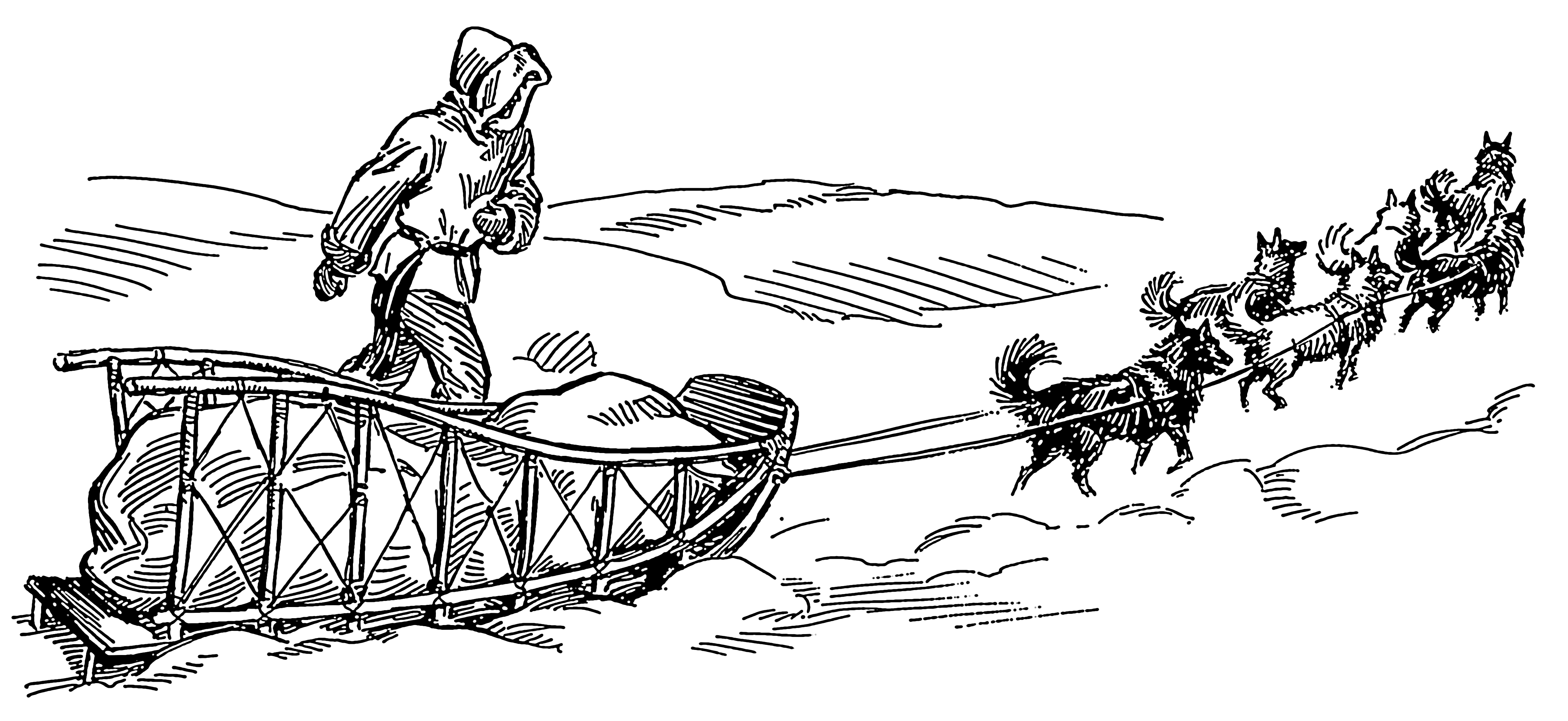 How To Draw A Dog Sled Team By Christina Abbey