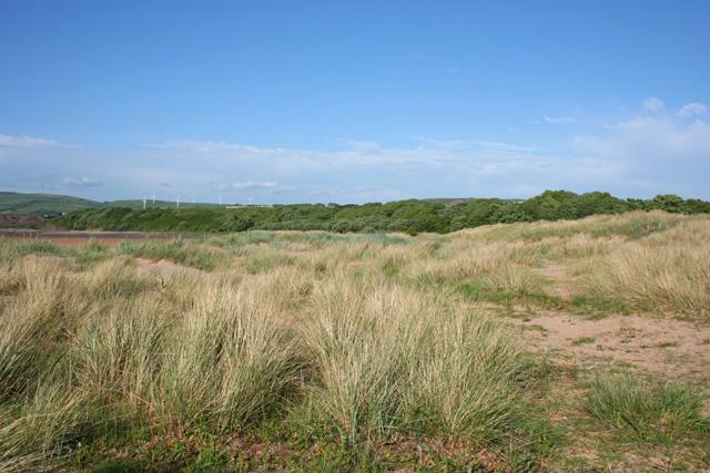 Dunes near Sandscale Haws - geograph.org.uk - 849627