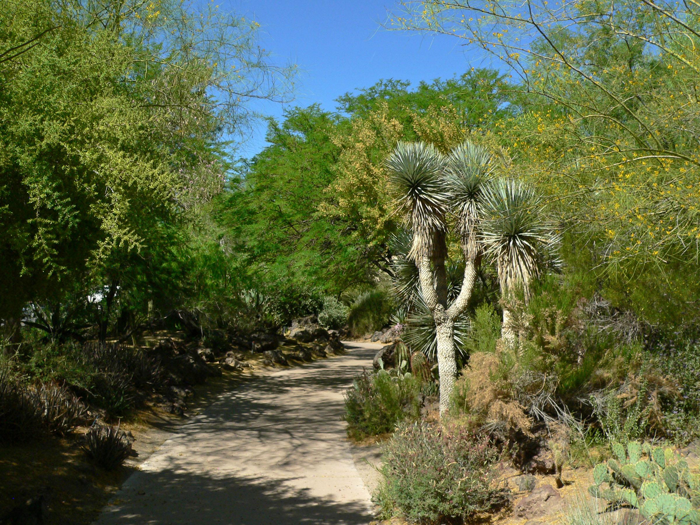 Ethel M Botanical Cactus Garden Ethel_M_Botanical_Cactus_Garden_3