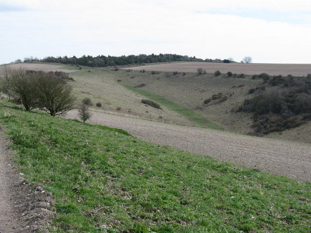 File:Fertile strip of green in dry valley near Rackham Hill - geograph.org.uk - 1226663.jpg