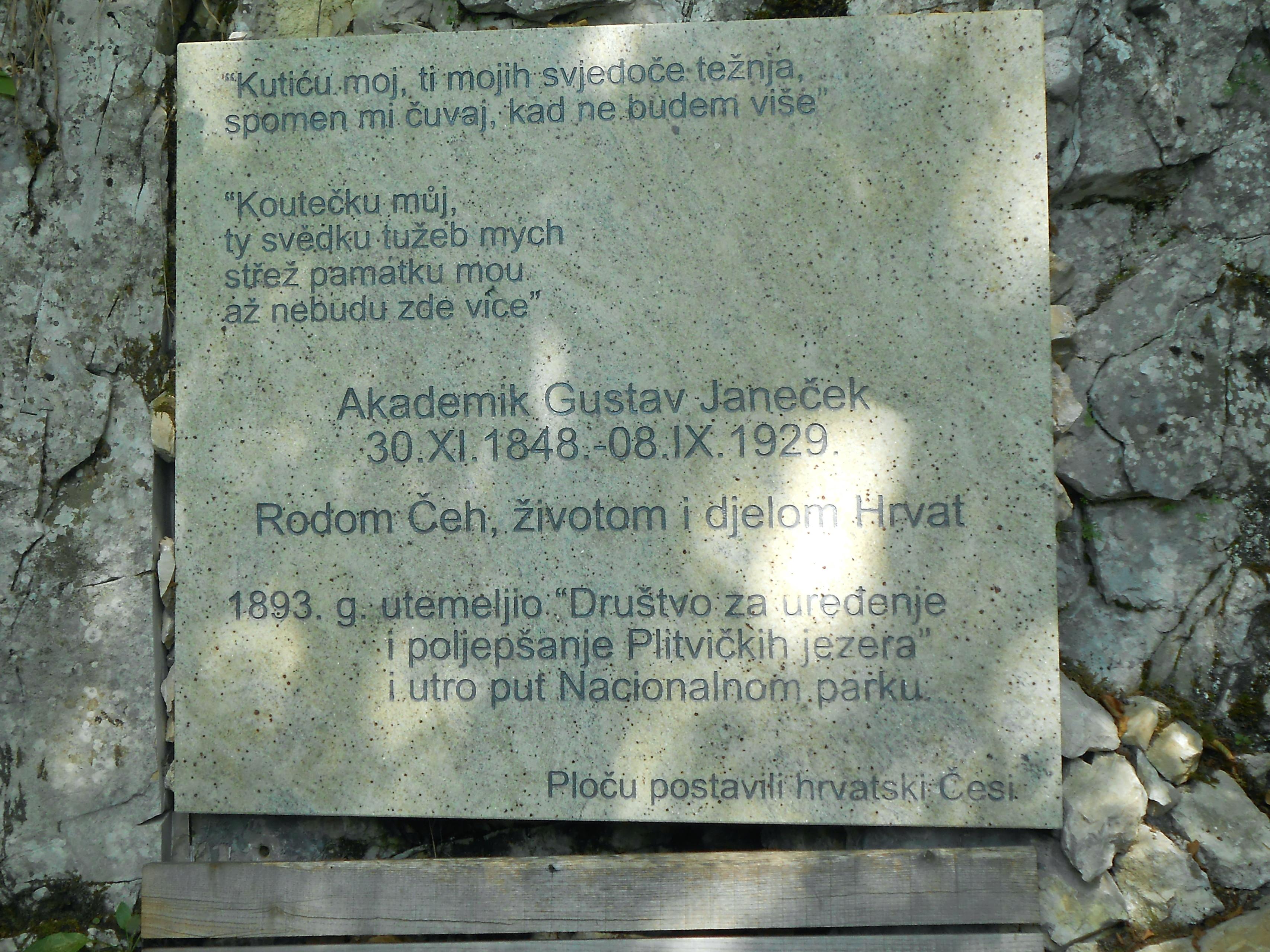 Gustav Janecek Wikipedija