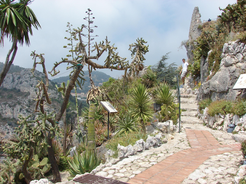 File Jardin Exotique Eze Provence Alpes Cote D Azur France