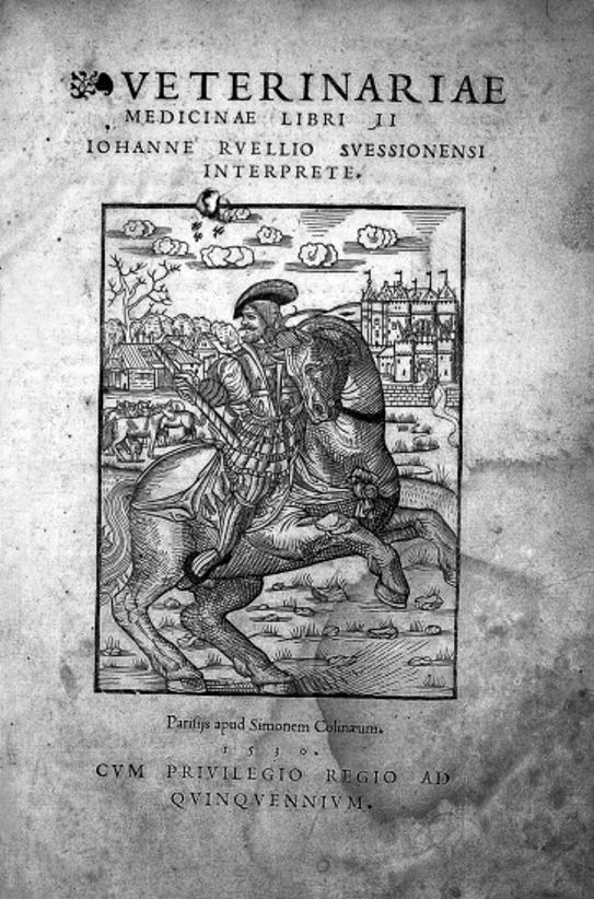 Title page woodcut of ''Veterinariae medicinae''