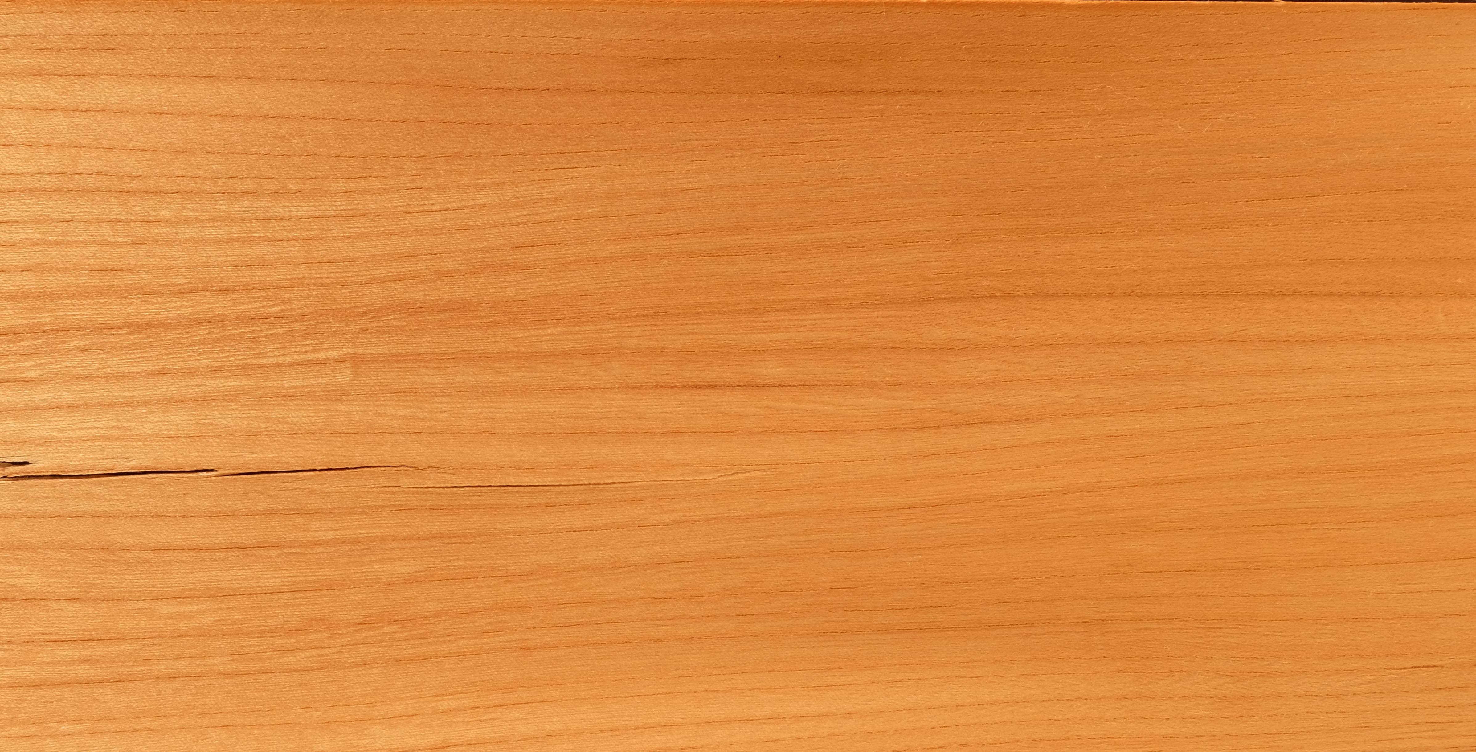 Rüster Holz file kanadischer rüster holz jpg wikimedia commons