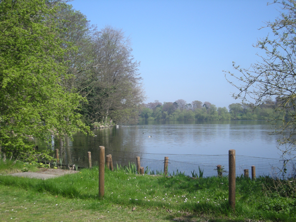 Looking across The Mere towards Paddock Wood - geograph.org.uk - 1260980
