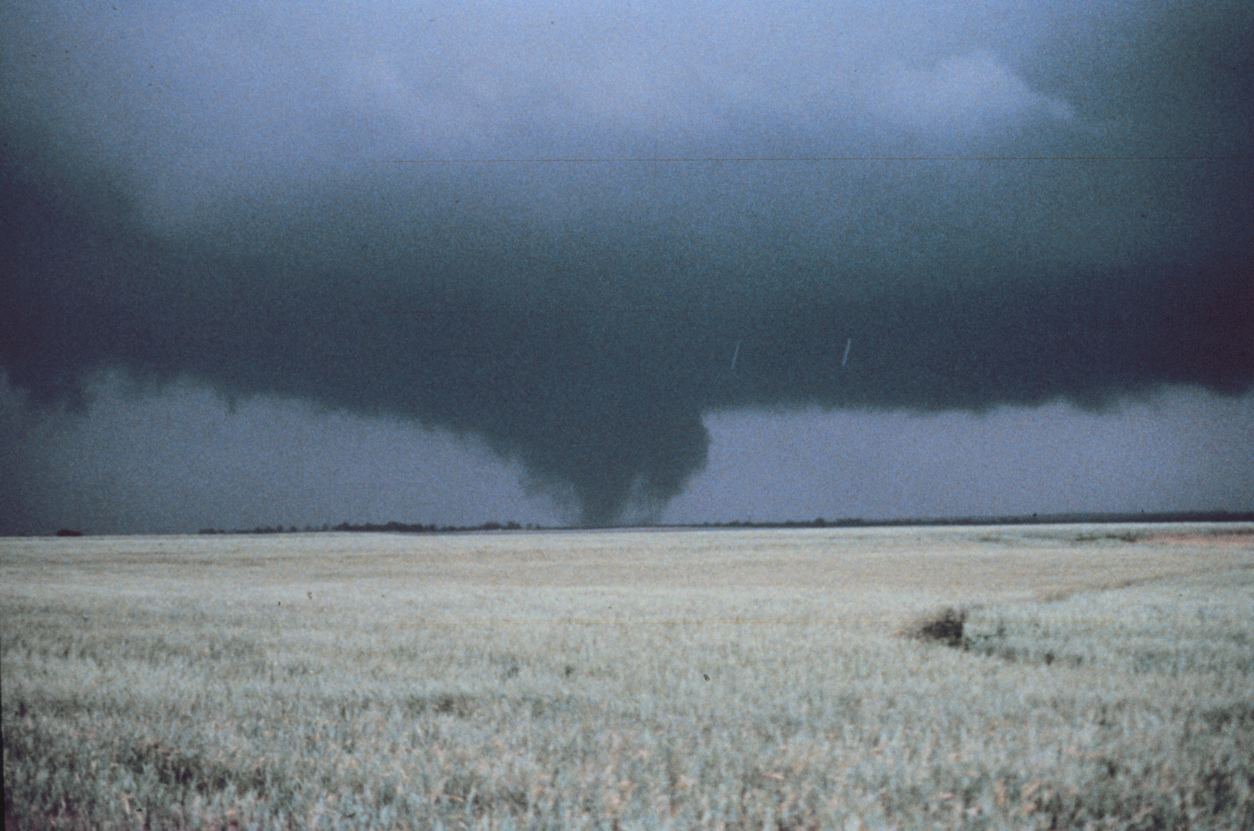 http://upload.wikimedia.org/wikipedia/commons/a/ab/Mayfield_Tornado2_-_NOAA.jpg
