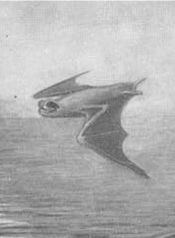 The average litter size of a Mongalla free-tailed bat is 1