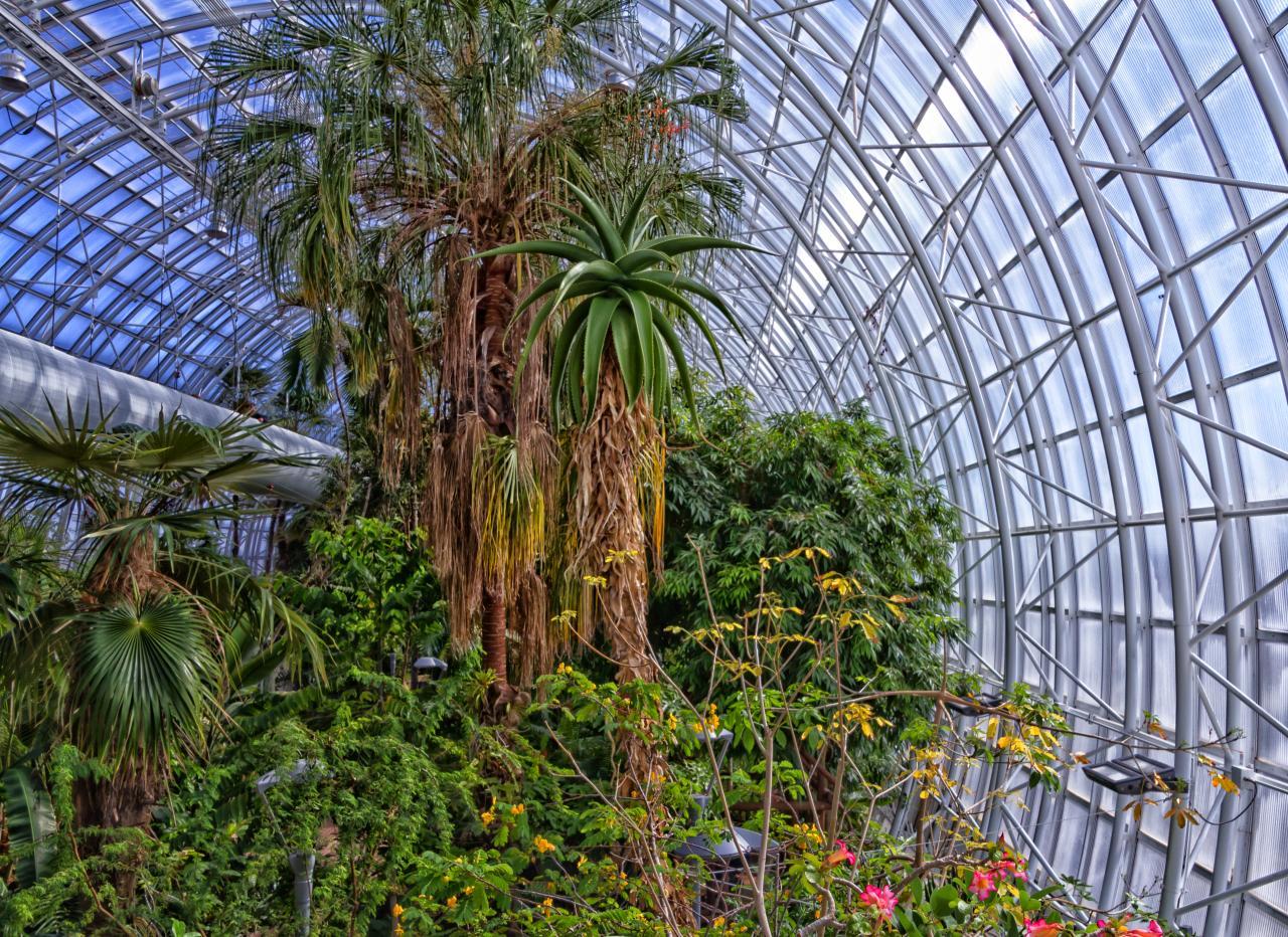 File:Myriad Botanical Gardens2