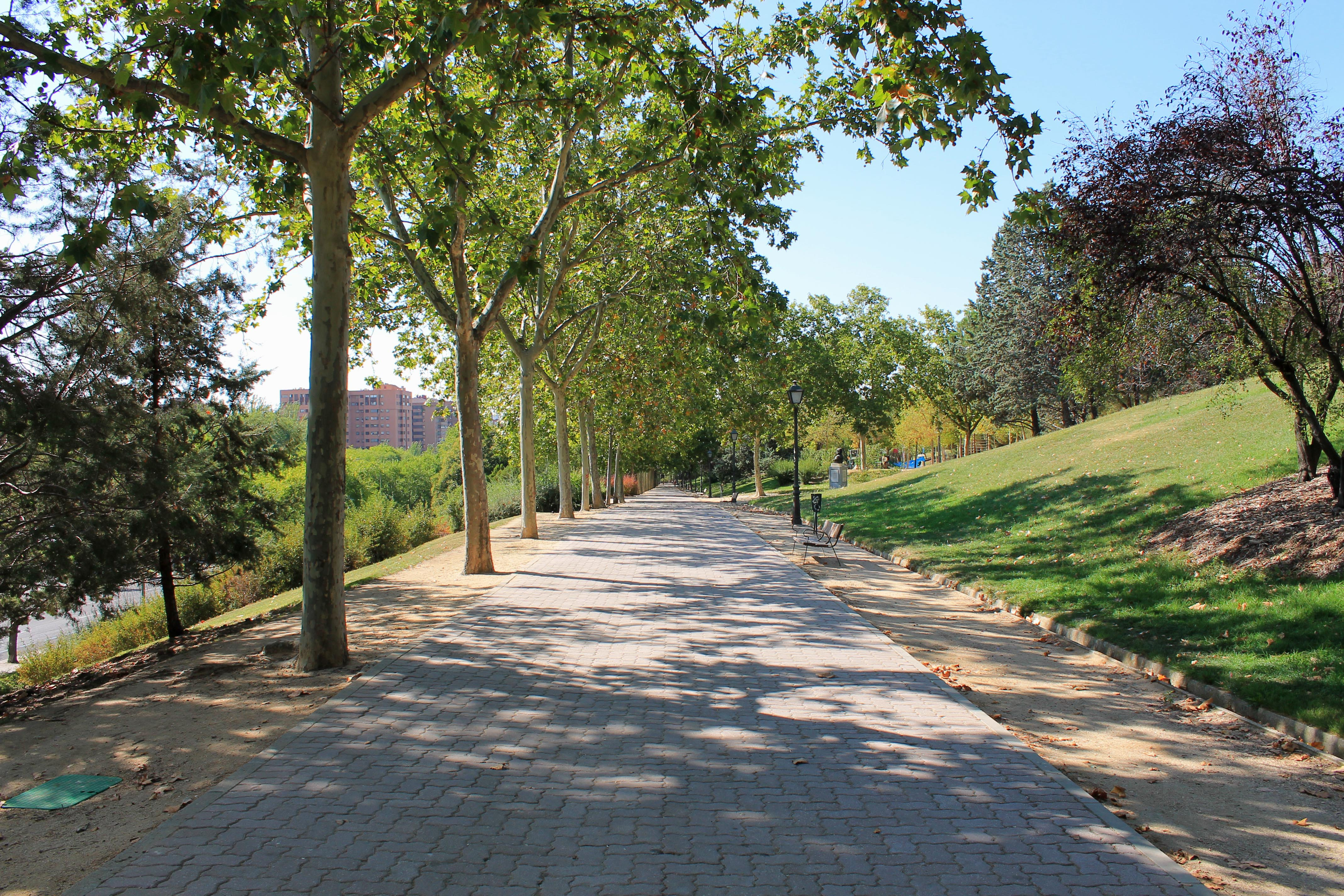 Parque Norte (Madrid, España) 02.jpg