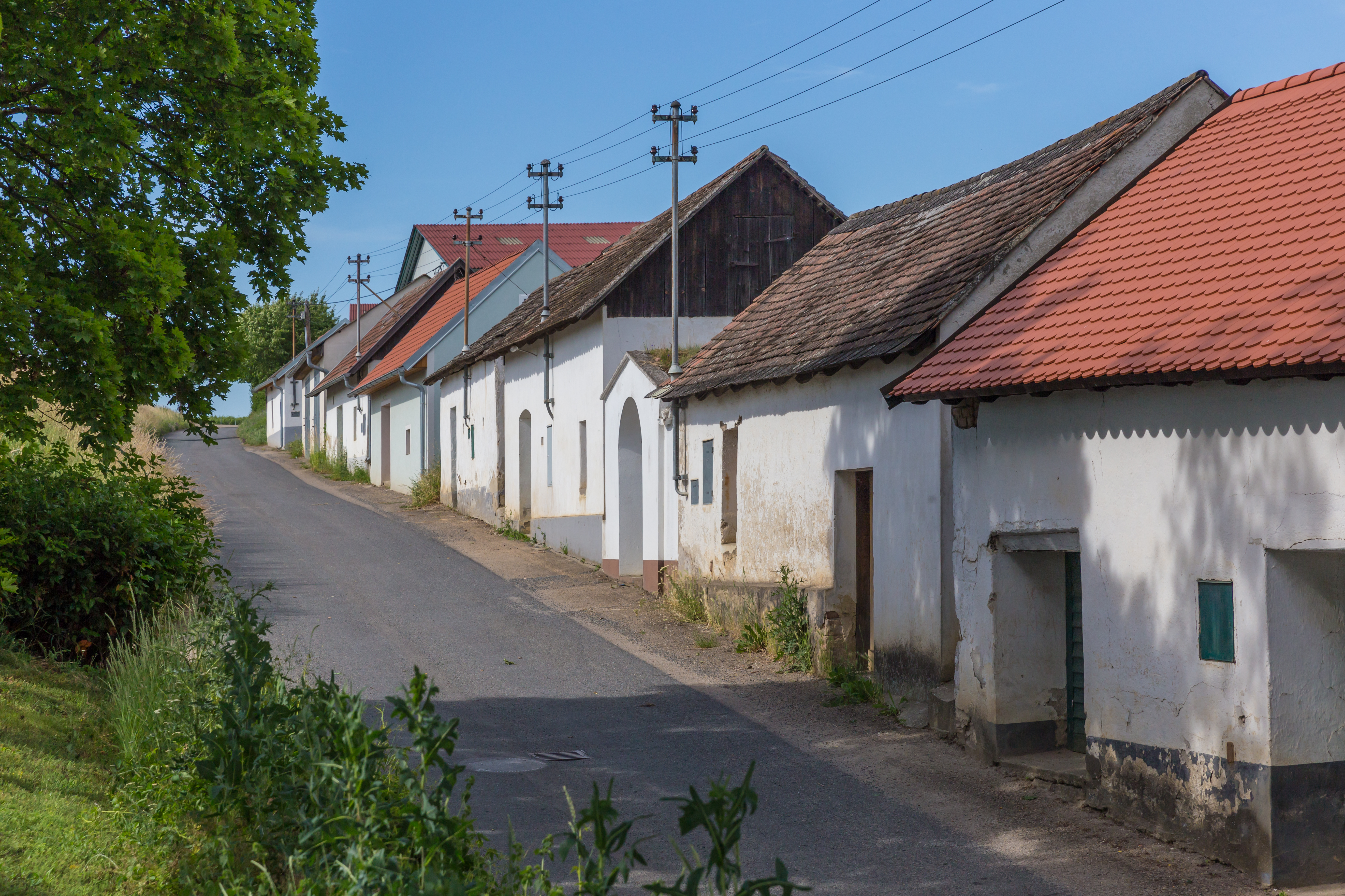 Dating seiten aus zellerndorf: Singlebrse kostenlos biberbach