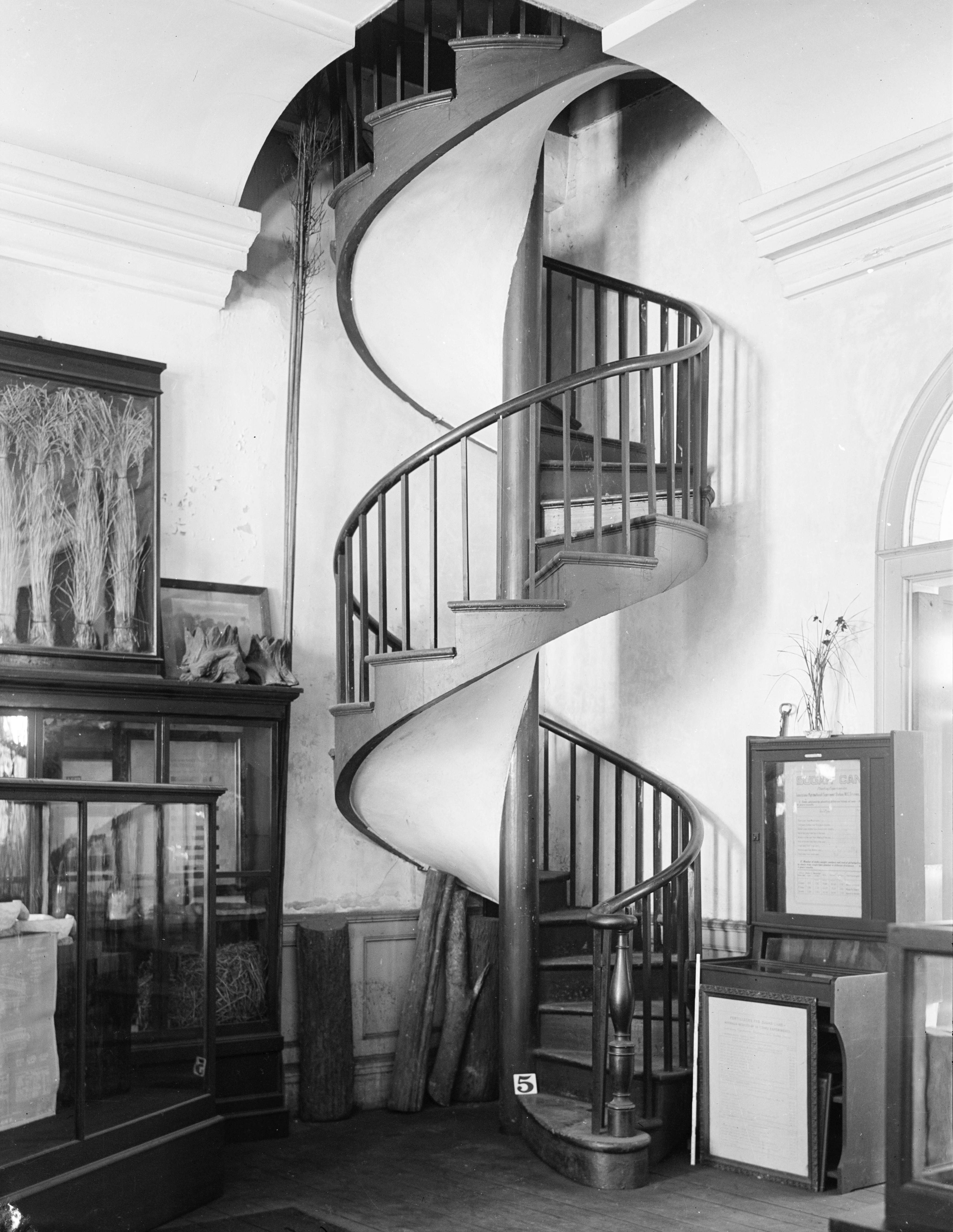 File:Spiral Staircase In The Presbytere New Orleans 1934