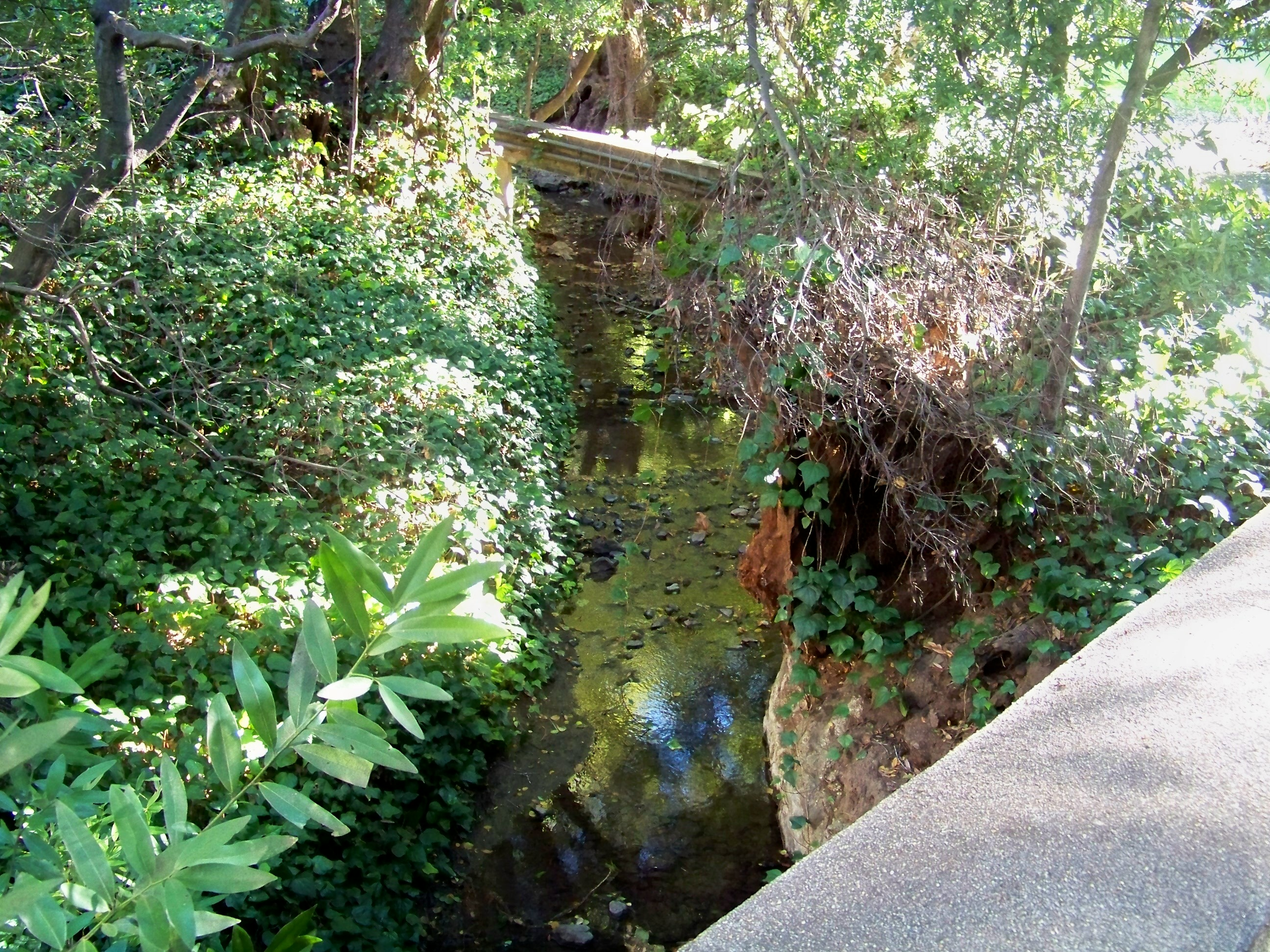 http://upload.wikimedia.org/wikipedia/commons/a/ab/StrawberryCreek1.JPG