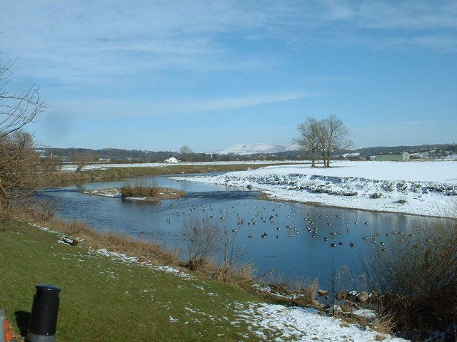 The Ribble at Ribchester - geograph.org.uk - 1053985