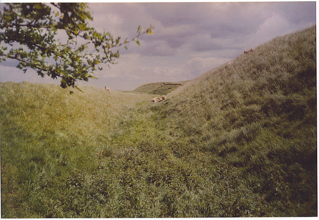 The Wansdyke on Tan Hill. - geograph.org.uk - 185604
