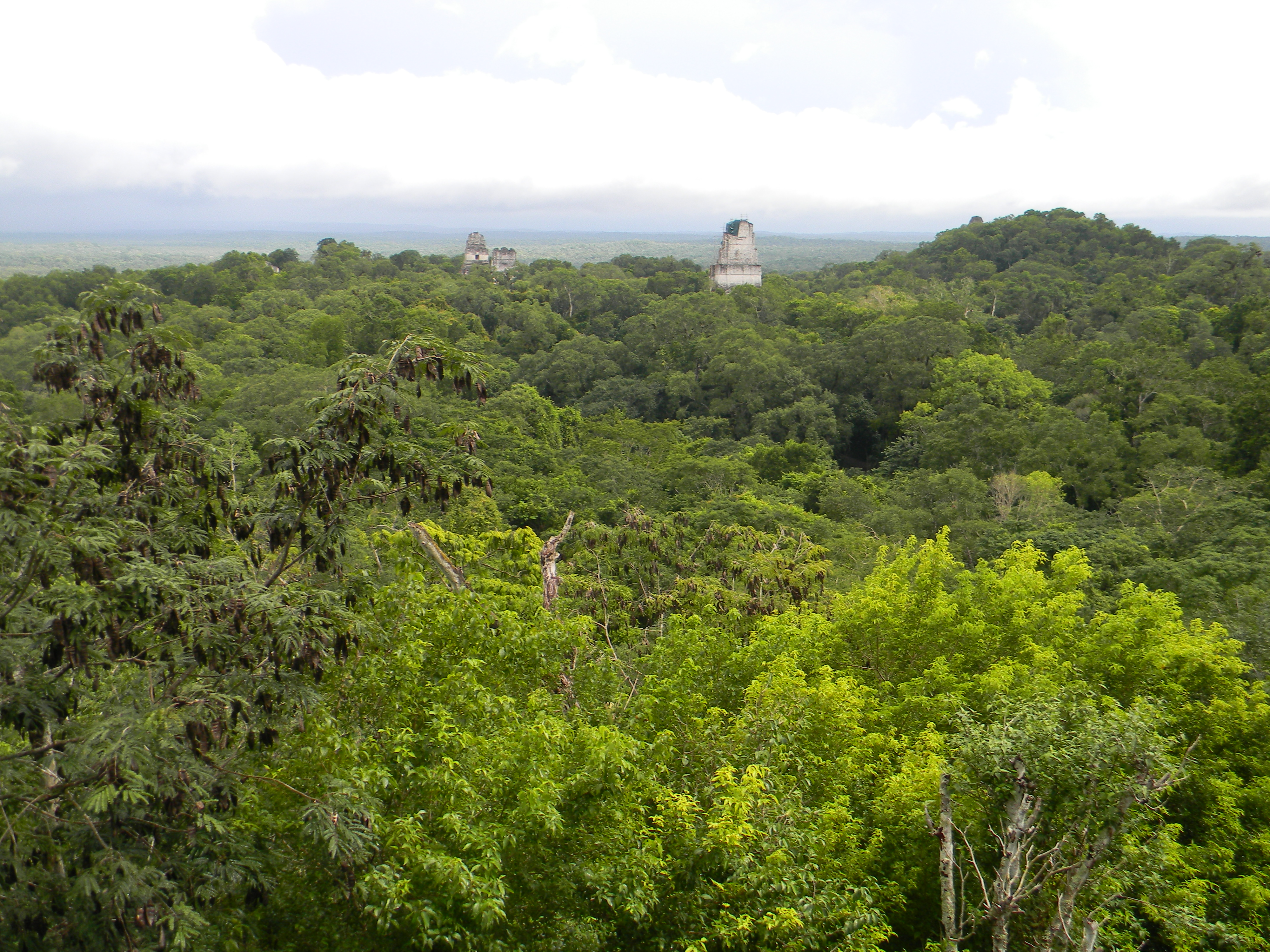 File:tikal Guatemala