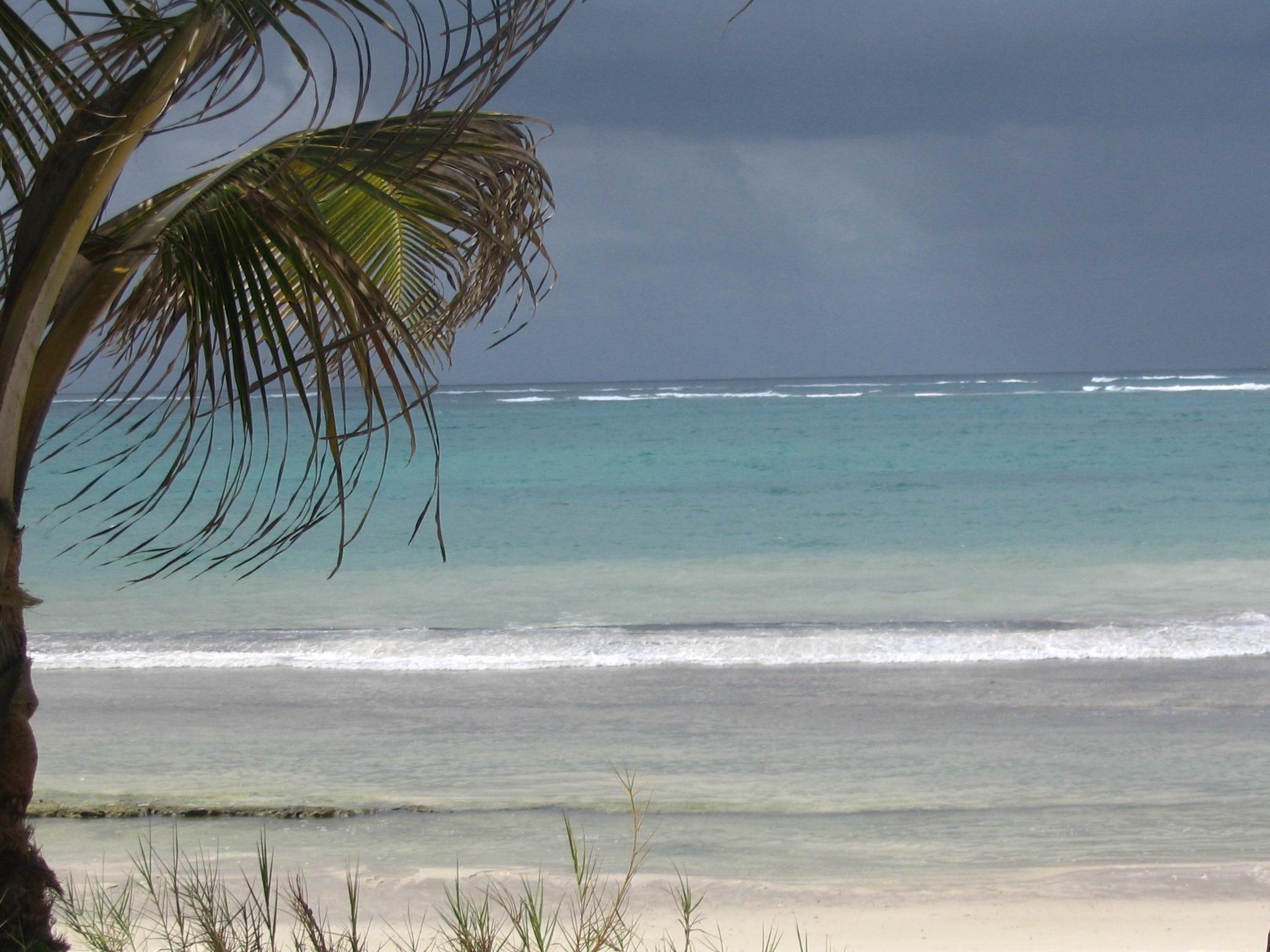 The Beach Club Gulf Breeze Fl