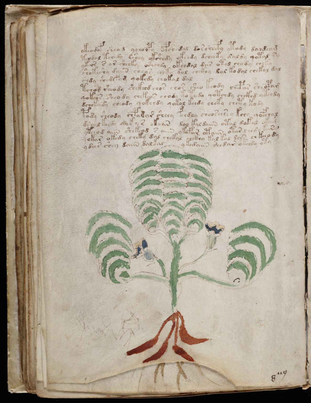 Voynich Manuscript Facsimile Description Voynich Manuscript