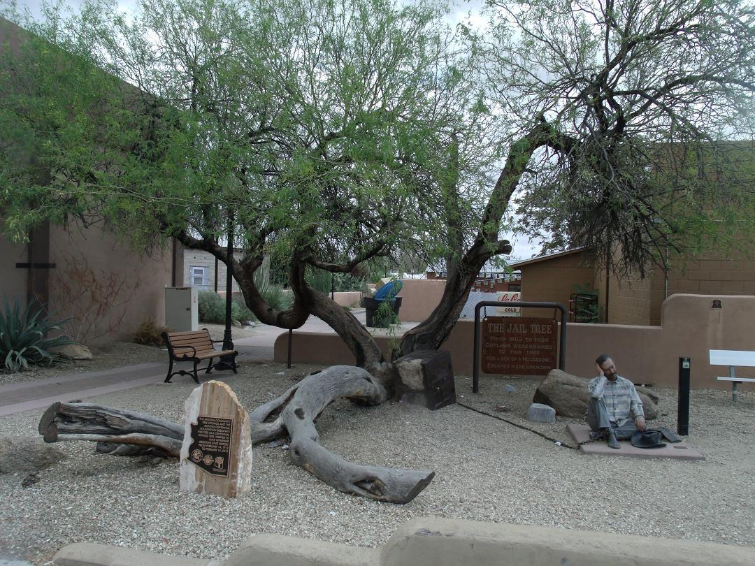 Jail Tree Wikipedia