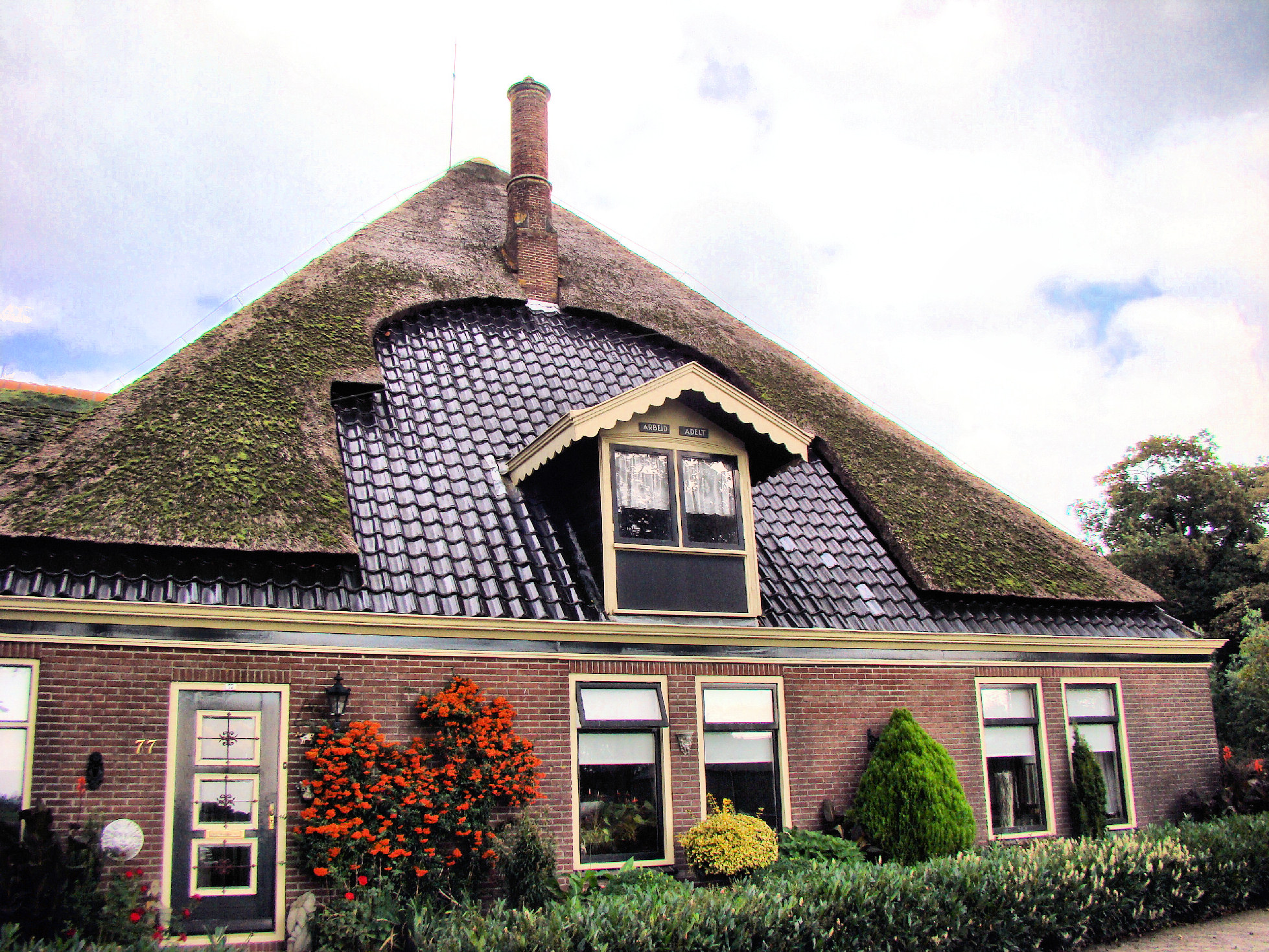File:Wiki thatched roof 2b.jpg - Wikimedia Commons