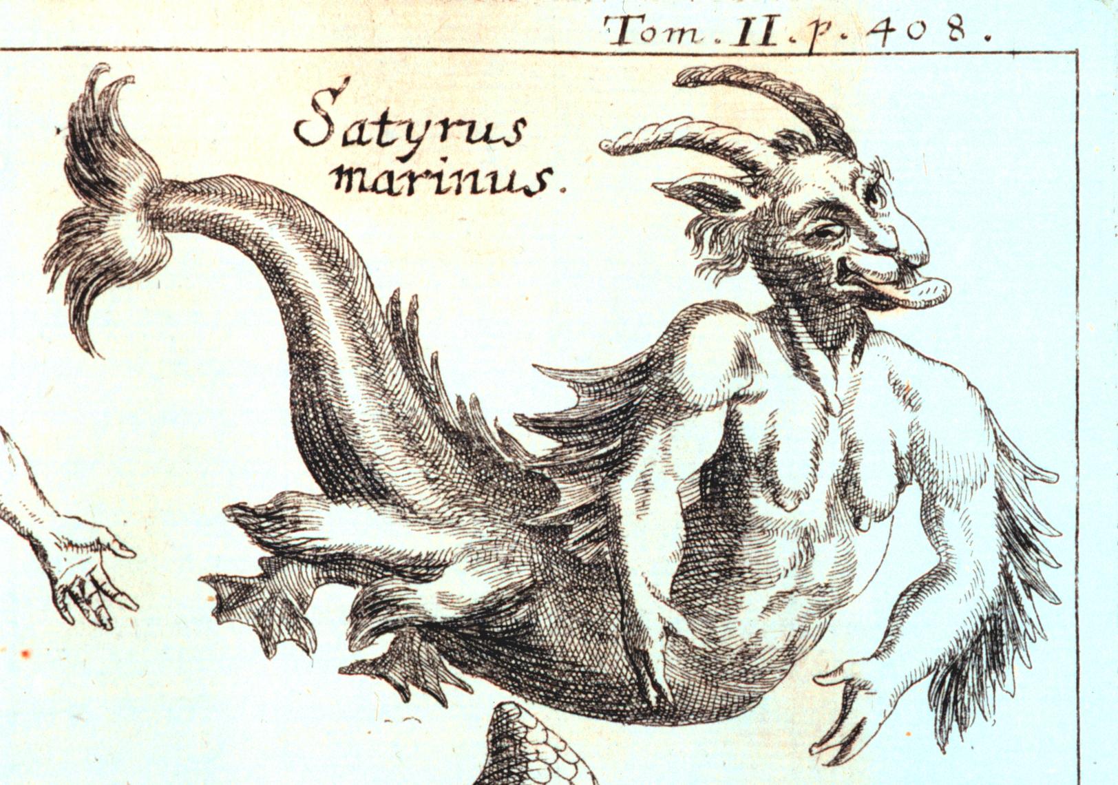 File:Zahn, Johann - Mythical Satyrus marinus - 1696.jpg