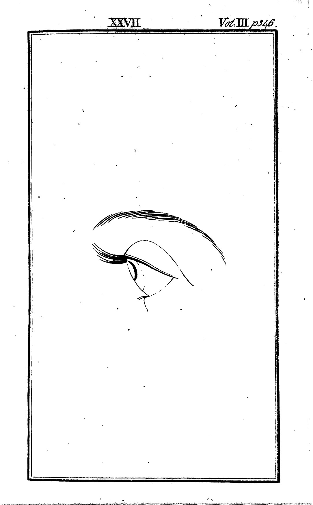 file an eye in profile from lavater essays on physiognomy  file an eye in profile from lavater essays on physiognomy 1792 wellcome