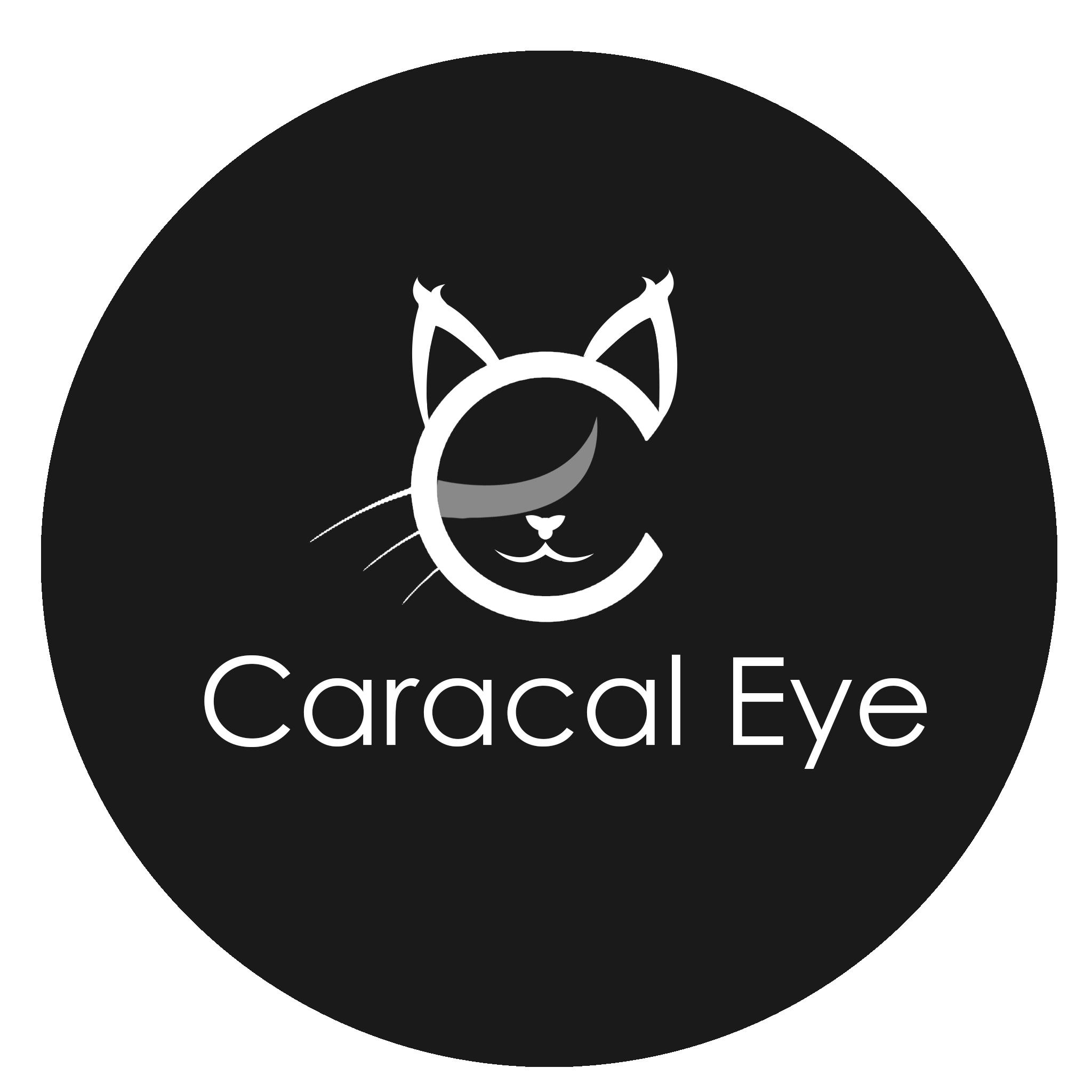 File:Caracal Eye Company Logo.png - Wikimedia Commons