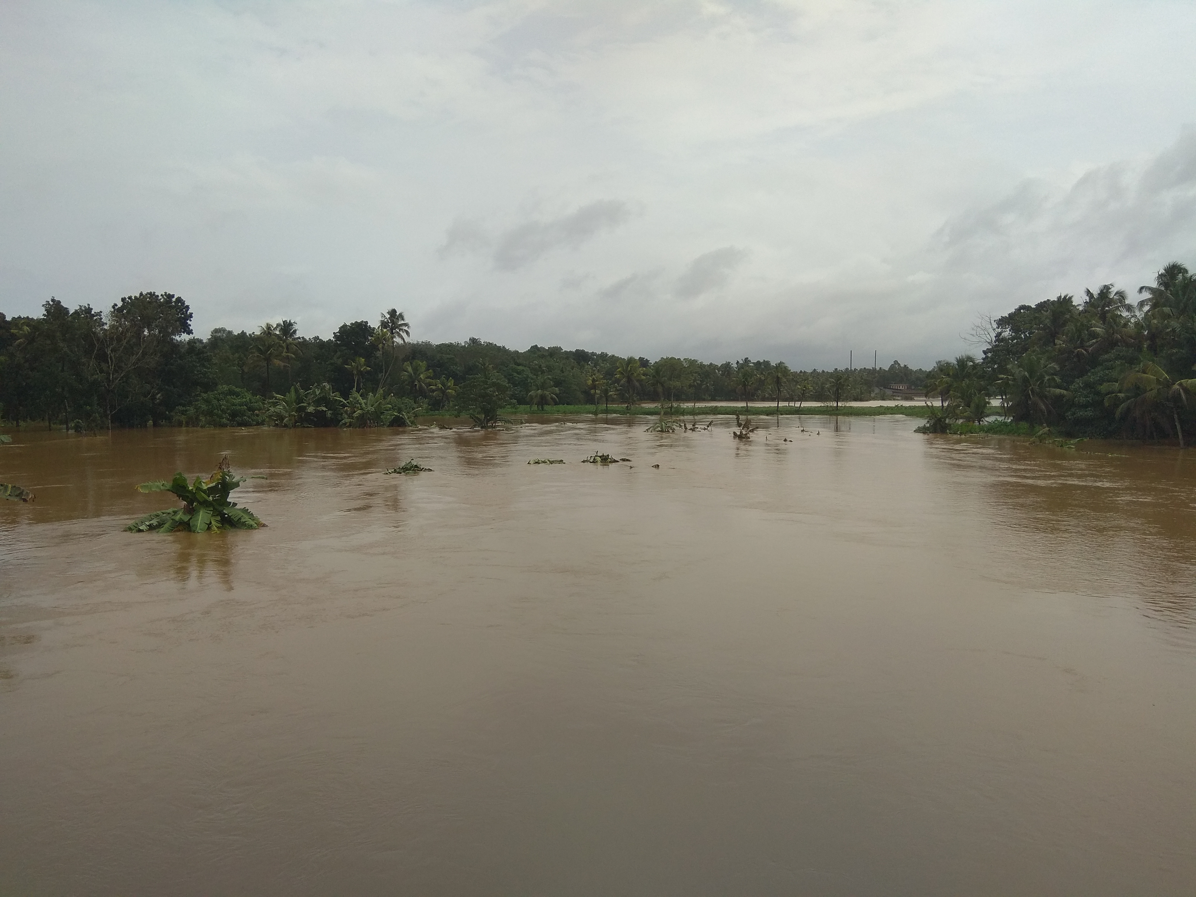 Image result for flood in kerala 2018