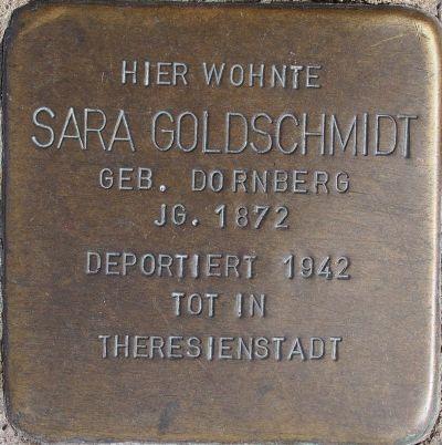 Goldschmidt Sara.jpg