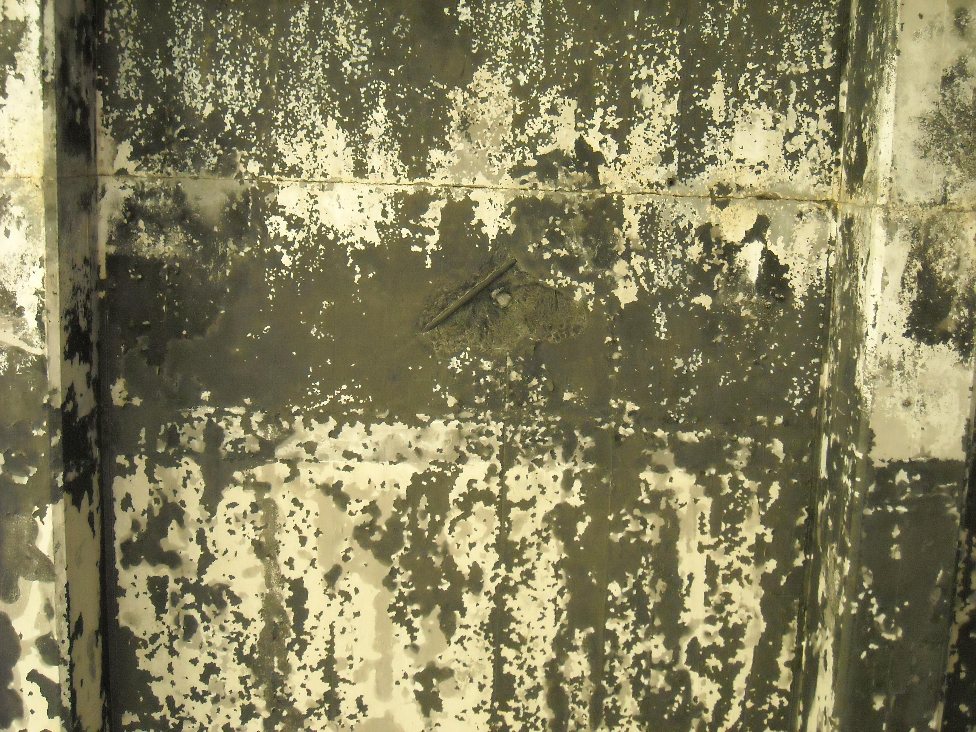 File:Grunge texture.jpg - Wikimedia Commons