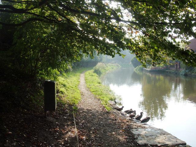 Macclesfield Canal, Hurdsfield - geograph.org.uk - 261301