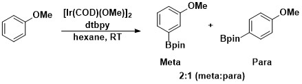 Meta-para borylation