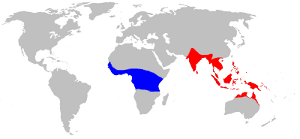 Map showing range of Oecophylla