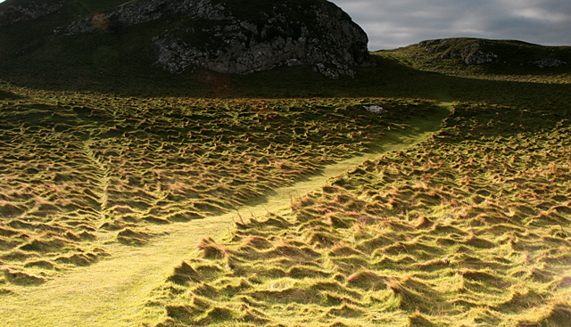 Path across top of Little Orme - geograph.org.uk - 425572