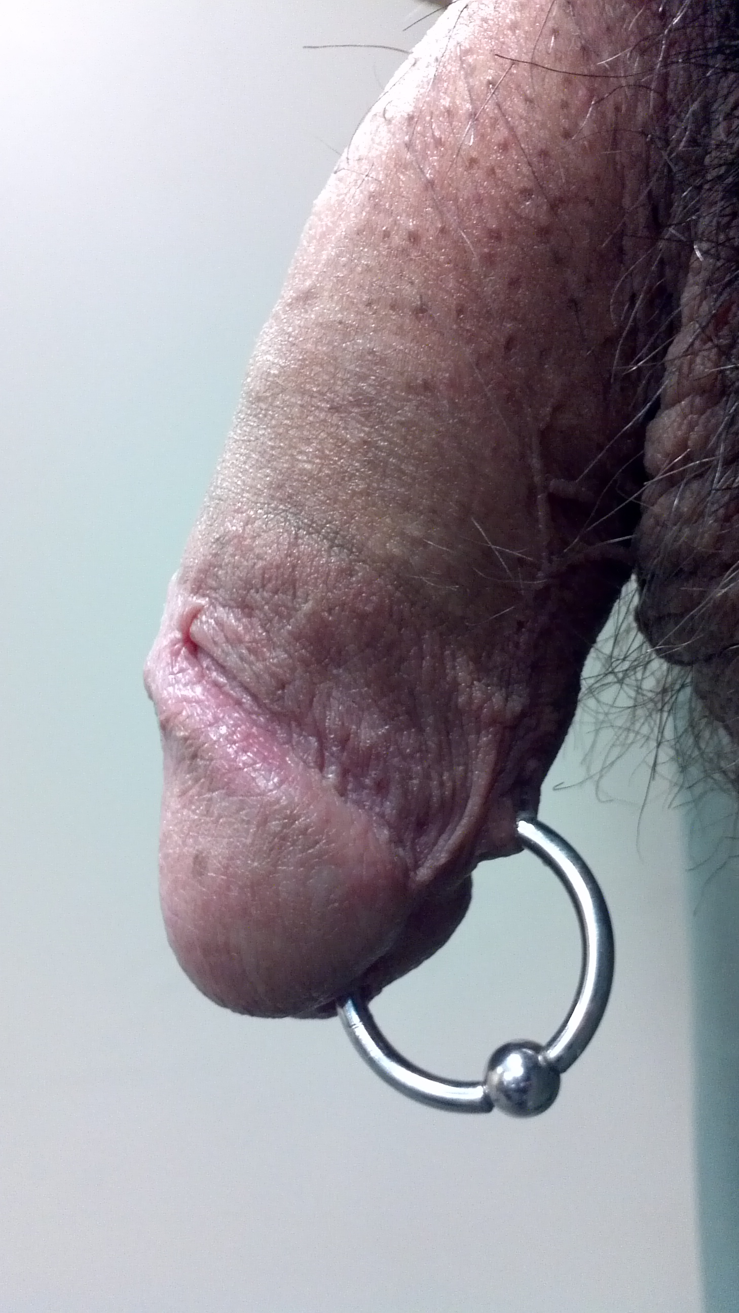 prince albert piercing