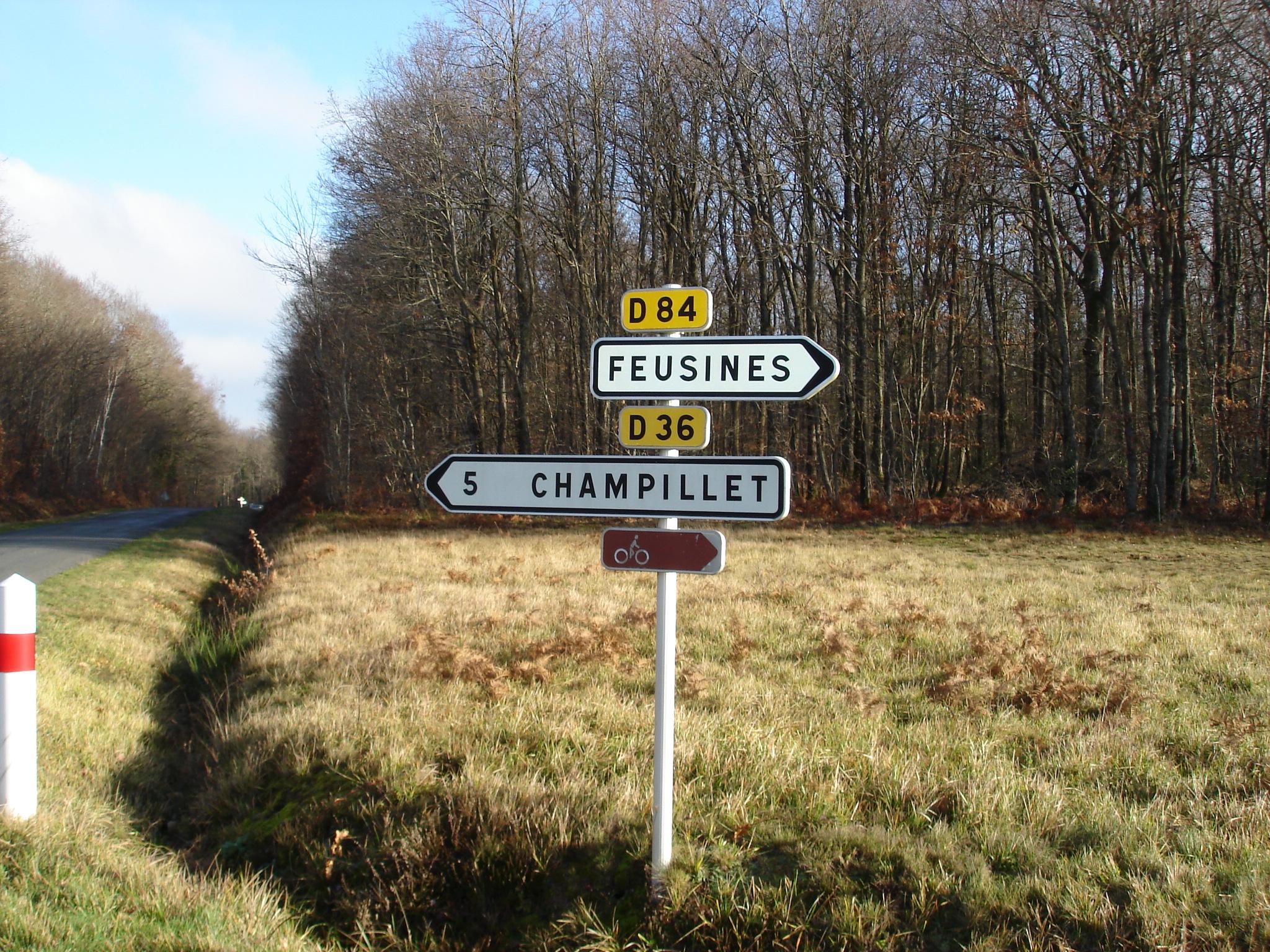 Massage Erotique A Auxerre Par Une Portugaise Sortir Avec Une Salope