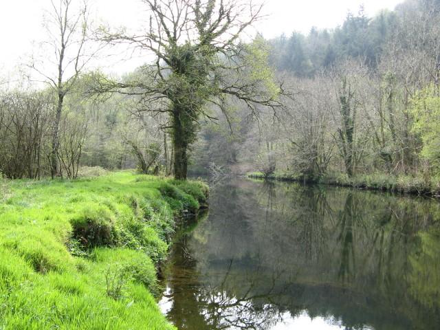 River Tavy, Buckland Abbey Estate - geograph.org.uk - 403002