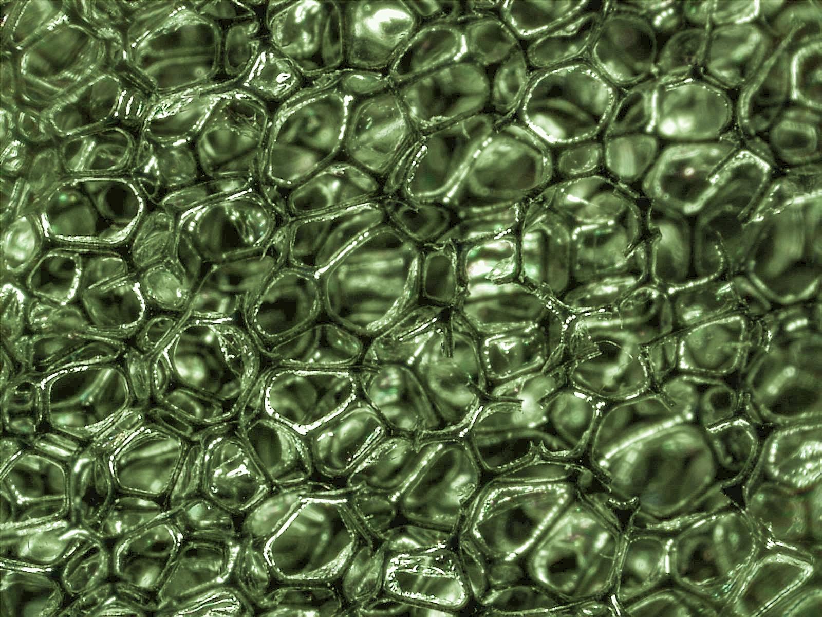 Polymeric foam - Wikipedia