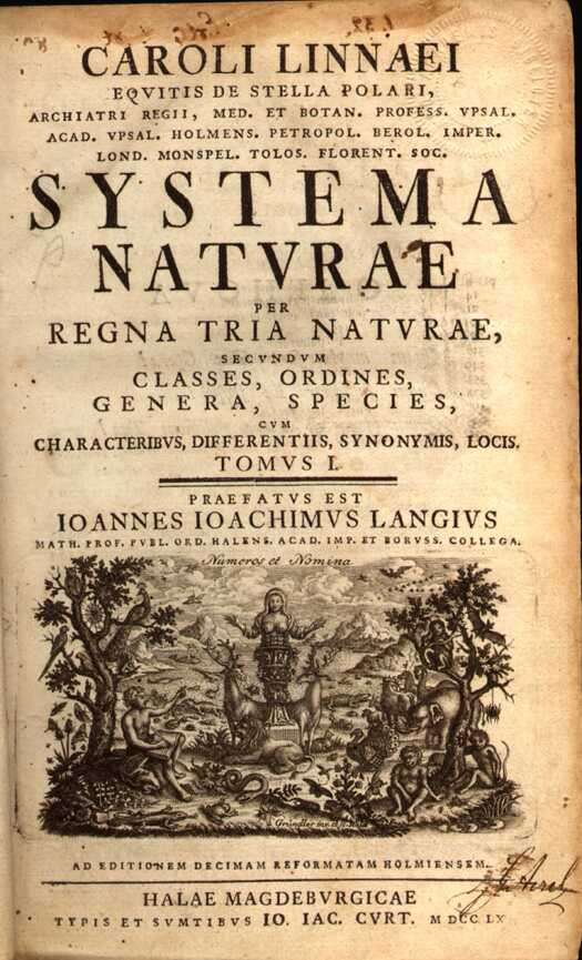 File:Systema Naturae cover.jpg
