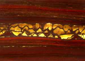 """""""Photograph of the surface of a stone which shows horizontal alternating bands of red and black with a band of golden-colored fibers in a band across the center"""""""