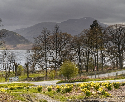 "The daffodils of the Lake District are immortalised in Wordworth's ""I Wandered Lonely as a Cloud"". Ullswater (geograph 3932818) (cropped).jpg"