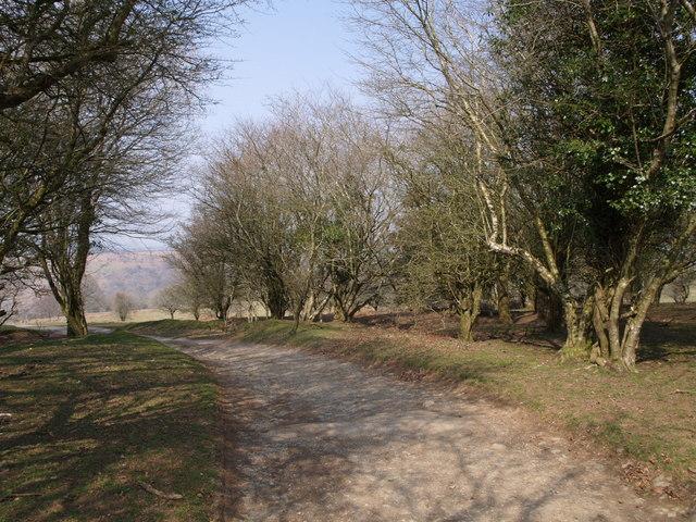 West Devon Way near Alston - geograph.org.uk - 384771
