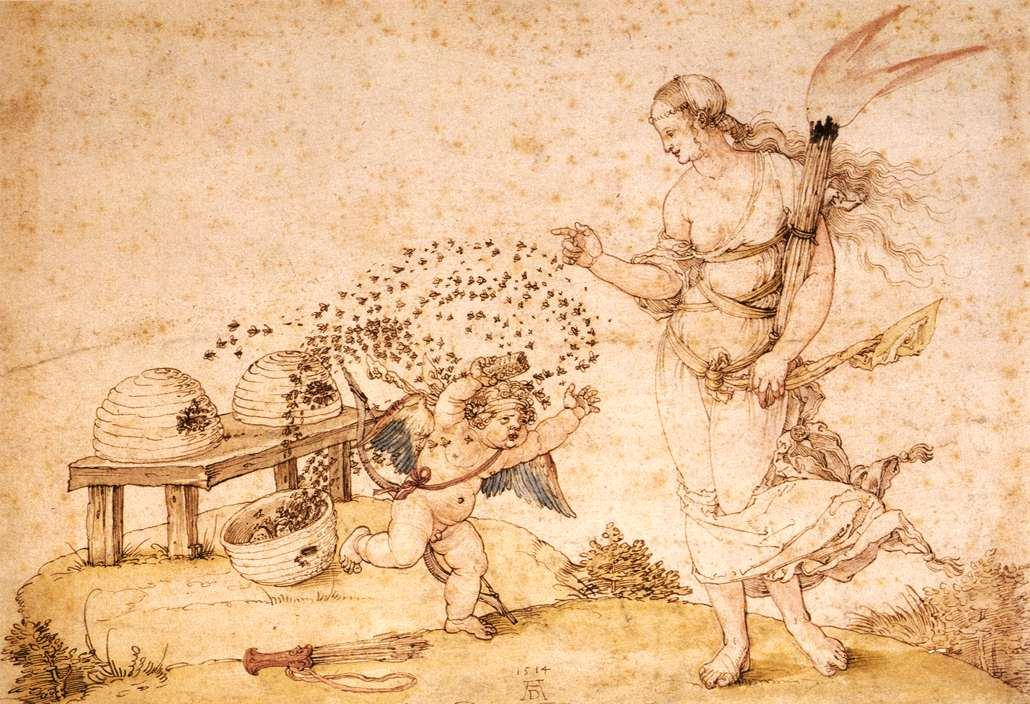 cupid the honey thief, Durer